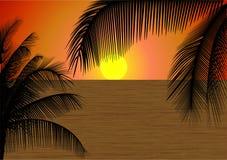 Tropische Zonsondergang Stock Afbeelding