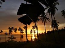 Tropische zonsondergang met bomensilhouet. Royalty-vrije Stock Afbeeldingen