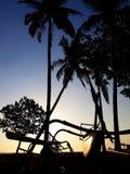 Tropische zonsondergang met palmensilhouet en catamaran royalty-vrije stock foto