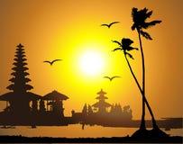 Tropische zonsondergang, palmsilhouet Stock Foto's