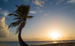 Tropische zonsopgang bij het strand Stock Foto's