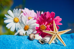Tropischer Badekurort Lizenzfreies Stockbild