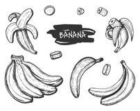 Tropischer Bananenimbiß und -nahrung stockfotos