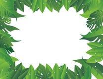 Tropischer Blathintergrund vektor abbildung