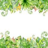 Tropischer Blattrahmen des Aquarells Lizenzfreies Stockfoto