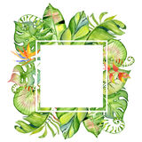 Tropischer Blattrahmen des Aquarells Lizenzfreies Stockbild