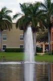 Tropischer Brunnen mit Ente Stockfotografie