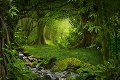 Tropischer Dschungel Stockbilder