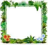 Tropischer Dschungel-Bambushintergrund stockfoto