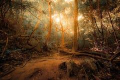 Tropischer Dschungelwald der Fantasie in den surrealen Farben Konzeptlandschaft stockfotos