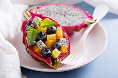 Tropischer exotischer Salat innerhalb einer Drachefrucht Lizenzfreie Stockfotos