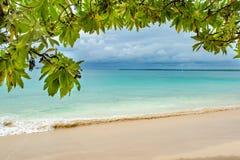 Tropischer Feiertag, ein tropischer Strand mit Türkiswasser und Lichtsand gestaltet durch Blätter des tropischen Baums stockbild