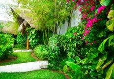 Tropischer Garten lizenzfreie stockbilder