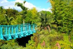Tropischer Garten Hamilton Gardenss Hamilton, Neuseeland lizenzfreies stockfoto