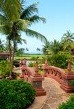 Tropischer Garten mit Fußbrücke. Goa Stockfoto