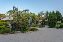 Tropischer Garten mit Wasserspray und Regenschirm in der Stadt von NaI Stockfoto