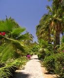 Tropischer Garten No.2 Lizenzfreies Stockfoto