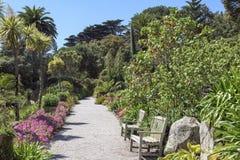 Tropischer Garten, Scilly-Inseln stockbild