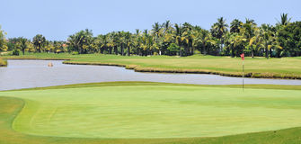 Tropischer Golfplatz lizenzfreie stockfotos