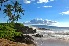 Tropischer hawaiischer Strand Lizenzfreies Stockfoto