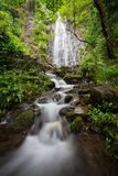 Tropischer hawaiischer Wasserfall tief im rianforest stockfotos