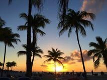 Tropischer Himmelsonnenuntergang Lizenzfreie Stockfotos