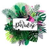 Tropischer Hintergrund des Sommers mit exotischem Blumenstrauß Lizenzfreies Stockbild