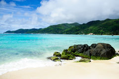 Tropischer Hintergrund mit einem exotischen Strand Lizenzfreies Stockbild