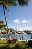 Tropischer Jachthafen lizenzfreies stockfoto