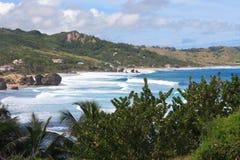 Tropischer karibischer Strand Stockbild