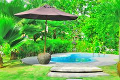 Tropischer Luxuxswimmingpool Stockfoto