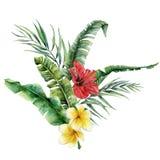 Tropischer mit Blumenblumenstrauß des Aquarells mit hellen Blumen Handgemalte Kokosnuss- und Bananenblätter, Plumeria, Hibiscus lizenzfreie abbildung