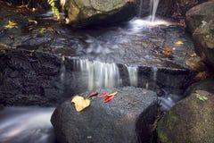 Tropischer Nebenfluss mit Wasserfall in Nord-Queensland stockbilder