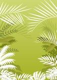 Tropischer Palmenhintergrund vektor abbildung