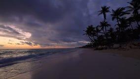 Tropischer Paradiesinselstrand und -meer mit KokosnussPalme Ferien und Sommerferien stock video