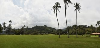 Tropischer Park in Hawaii Stockfoto