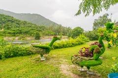 Tropischer Park mit schönem Landschaftsdesign an einer Flussseite mit grünen Zahlen von Vögeln Stockfotografie