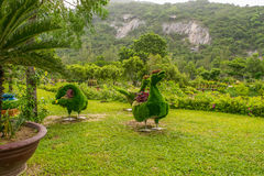 Tropischer Park mit schönem Landschaftsdesign mit grünen Zahlen von Vögeln Stockbilder