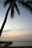 Tropischer Pier Lizenzfreies Stockfoto