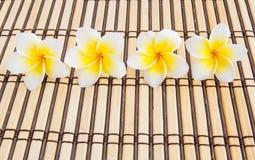 Tropischer Plumeria auf Bambusmatte für Badekurort und Wellnesskonzept Lizenzfreies Stockbild