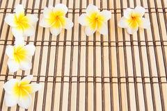 Tropischer Plumeria auf Bambusmatte für Badekurort und Wellnesskonzept Stockfotografie