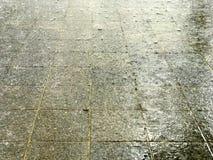 Tropischer Regen auf Pflasterung Lizenzfreies Stockfoto