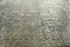 Tropischer Regen auf Pflasterung Lizenzfreie Stockfotografie