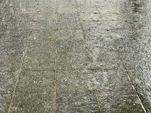 Tropischer Regen auf Pflasterung Stockfotos