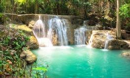 Tropischer Regenwald des Wasserfalls szenisch Stockfoto