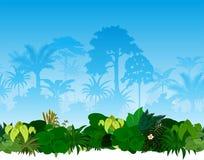 Tropischer Regenwalddschungel des Vektors Stockbilder