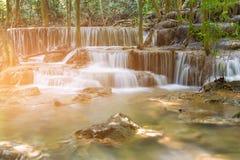 Tropischer Rohwasserfall in Wald der natürlichen Reserven stockbilder