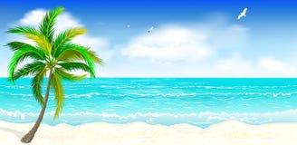 Tropischer sandiger Strand Lizenzfreies Stockbild