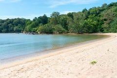 Tropischer sandiger Strand und Meer gestalten mit Bäumen landschaftlich Stockbild