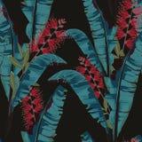 Tropischer Sommer nahtloses Vektormuster mit Bananenblatt malend Blumendschungel Protea-Paradiesblumen vektor abbildung